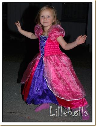 prinsesse1
